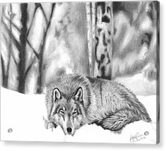 Sleeping In The Snow Acrylic Print