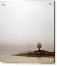Small Island With Lone Tree Acrylic Print by Andrew Lockie