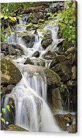 Small Waterfalls And Brook West Bolton Acrylic Print by David Chapman