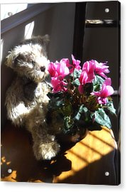 Acrylic Print featuring the photograph Smell The Flowers by Lynnette Johns