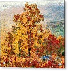 Smoke Tree In The Karst Acrylic Print