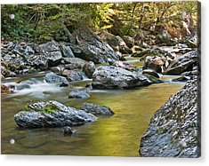 Smoky Mountain Streams II Acrylic Print
