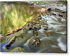 Smoky Mountain Streams Iv Acrylic Print