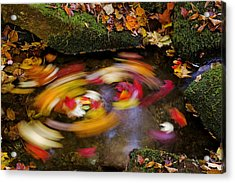 Smoky Mountain Whirlpool Acrylic Print by Rich Franco
