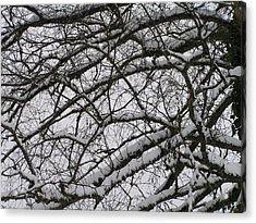 Snow Against A Grey Sky Acrylic Print by Rand Swift