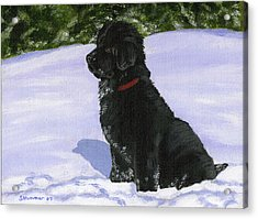 Acrylic Print featuring the painting Snow Baby by Sharon Nummer