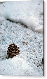 Acrylic Print featuring the photograph Snow Cone by Amee Cave