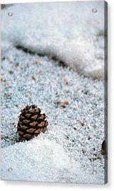 Snow Cone Acrylic Print