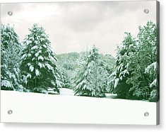 Acrylic Print featuring the photograph Snow Covered Countryside by Michael Waters