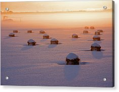 Snow-covered Rice Fields Acrylic Print by The landscape of regional cities in Japan.