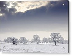 Snow Covered Trees And Field Acrylic Print by John Short