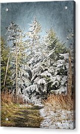 Snow Covered Trees Acrylic Print by Cheryl Davis