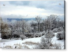 Snow In Winter Ithaca New York Acrylic Print by Paul Ge
