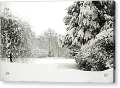 Acrylic Print featuring the photograph Snow Packed Park by Lenny Carter