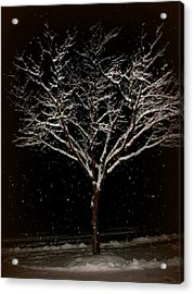 Snow Shower In The Night Acrylic Print