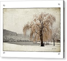 Snow Tree 1 Acrylic Print
