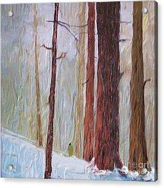 Snow Walker Acrylic Print