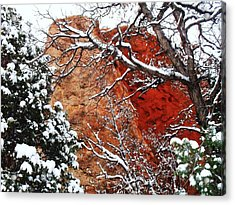 Acrylic Print featuring the photograph Snow White by Clarice  Lakota