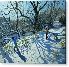Snowball Fight Acrylic Print by Andrew Macara