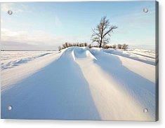 Snowdrift Acrylic Print by Susan McDougall Photography