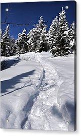 Snowshoe Trail Acrylic Print