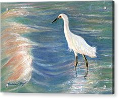 Snowy Egret At Sunset Acrylic Print by Jeanne Kay Juhos