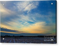 Snowy Field Sunset Acrylic Print by Ursula Lawrence