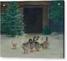 Snowy Geese Acrylic Print by Susan Fuglem