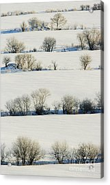 Snowy Landscape Acrylic Print by Jeremy Woodhouse