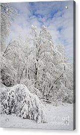Snowy Landscape Acrylic Print by Len Rue Jr and Photo Researchers
