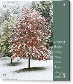 Snowy Maple With Buddha Quote Acrylic Print