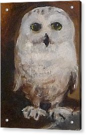 Acrylic Print featuring the painting Snowy Owl by Jessmyne Stephenson