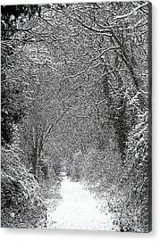 Snowy Path Acrylic Print by Linsey Williams