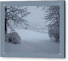Snowy Path Acrylic Print by Patricia Overmoyer