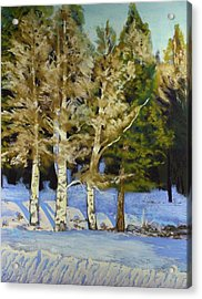 Acrylic Print featuring the painting Snowy Sunset Aspen by Drusilla Montemayor