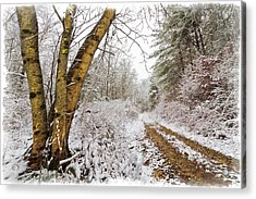 Snowy Watercolor Acrylic Print by Debra and Dave Vanderlaan