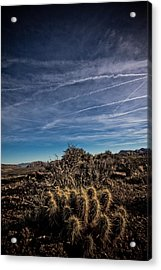 So Lonesome Acrylic Print by Merrick Imagery