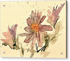 Soft Asters Aged Look Acrylic Print by Beverley Harper Tinsley