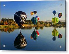Soft Landings Acrylic Print by Mike  Dawson