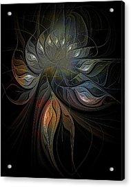 Soft Metals Acrylic Print by Amanda Moore