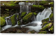 Sol Duc Stream Acrylic Print by Mike Reid