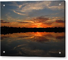 Solace Acrylic Print by Bill Lucas
