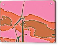 Solar Power Acrylic Print by Elizabeth  Doran