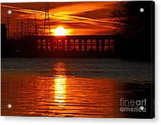Solar Power Acrylic Print by Sue Stefanowicz
