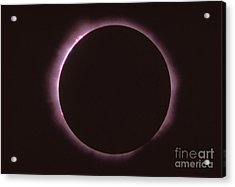 Solar Prominence And Chromosphere Acrylic Print by Science Source