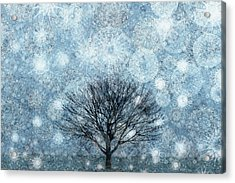 Solitary Winter Tree Caught In A Snow Storm Acrylic Print by Andrew Bret Wallis