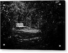 Solitude Acrylic Print by CJ Schmit