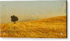 Solitude Is Golden Acrylic Print by Aaron Stokes