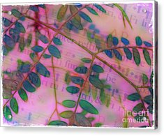 Song Of The Honey Locust Acrylic Print by Judi Bagwell