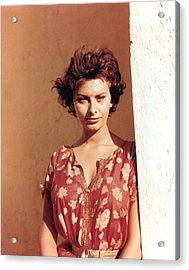 Sophia Loren, Legend Of The Lost, 1957 Acrylic Print